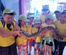 Воспитанники лагеря «Айылгы» в контактном зоопарке